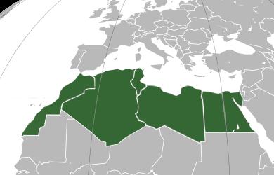 Création du Comité National du Réseau Universitaire sur les migrations en Afrique du Nord (NAMAN)